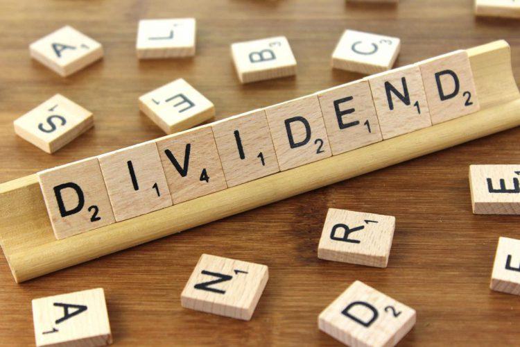 dividend ELANA Agrocredit